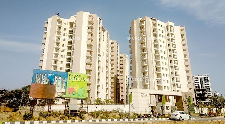 Cedar Luxuria Patrakar Colony