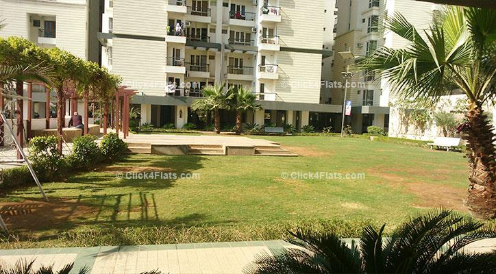 Buy Ashadeep Green Avenue